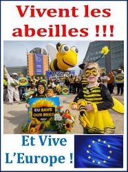 blog abeilles