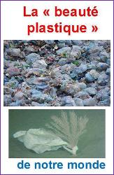 blog plastique